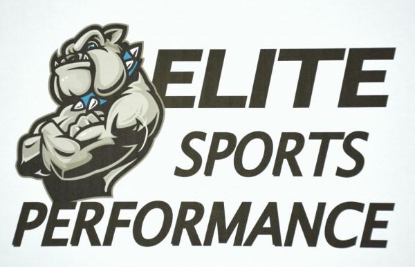 Elite Sports Performance Logo